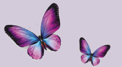 papilllon-Nutripuncture